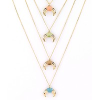 Colorful Horn Delicate Necklace