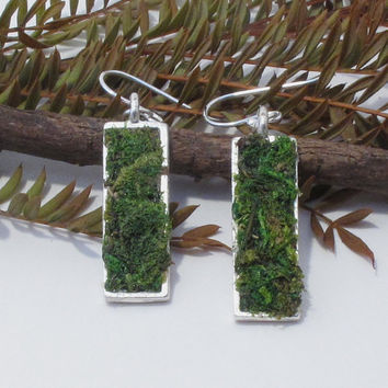 Eco Friendly Moss Earrings, Terrarium Jewelry, Living Plant Jewelry, Earth Day Earrings