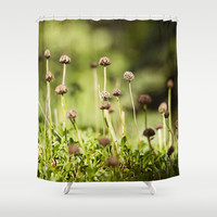 Small World Shower Curtain by Dena Brender Photography