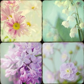 Sale Flower Photographs Shabby Chic Home  Lilacs by JudyStalus