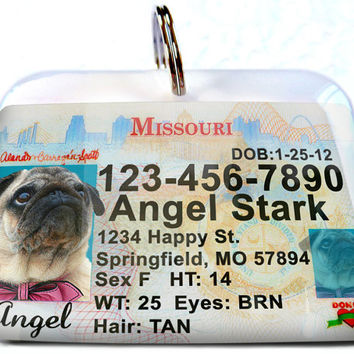 Missouri driver license Personalized Custom ID Tags for dogs and cats Double Sided pet tags