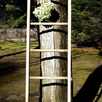 Vintage Wooden Ladder, Weathered Primitive Barn Salvage, Quilt Hanger, Display Rack, Seven Rungs, Rustic Farmhouse Decor