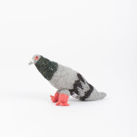 Baby Pigeon – Project No. 8
