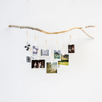 Ombre Tree Branch Photograph Hanger with white fading clothespins. Hand carved and wrapped with gray, white and black strings and twine