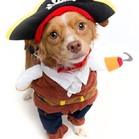 Pirate Dog Costume - Limited Edition (Small)