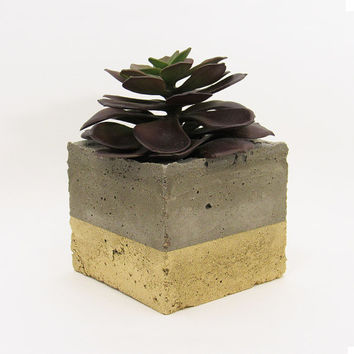 Concrete Planter, Succulent Planter, Indoor Planter, Modern Planter, Gold Planter, Cement Planter, Air Plant Holder, Succulent Pot