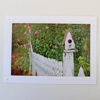 Birdhouse Fence Photo Greeting Card, Fine Art Photography, Photo Notecard for Bird Lovers, Matted Photo for Gardeners, White Picket Fence