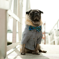 The Port Gingham Dog Shirt