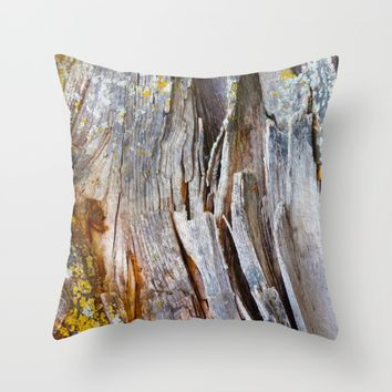 Relic of the Forest Throw Pillow by Heidi Haakenson