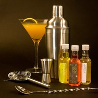 THE COCKTAIL KIT