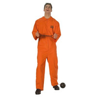 Rubie's Mens Jail Bird Halloween Party Prisoner Costume