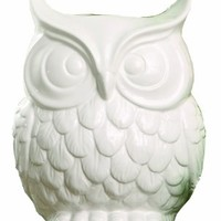 Creative Co-op Glee Dolomite Owl Vase, 9-Inch, White