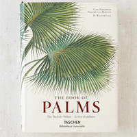 The Book Of Palms By H. Walter Lack | Urban Outfitters