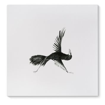 CROW IN TRIANGLE Canvas Art By Birds Doing Yoga