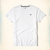 Guys Must-Have Crew T-Shirt | Guys Tops | HollisterCo.com