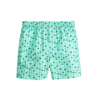 crewcuts Boys Printed Cotton Boxers