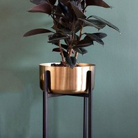 """Dash Metal Plant Stand with Gold Flower Pot - 11.75"""" Tall x 9.5"""" Wide"""