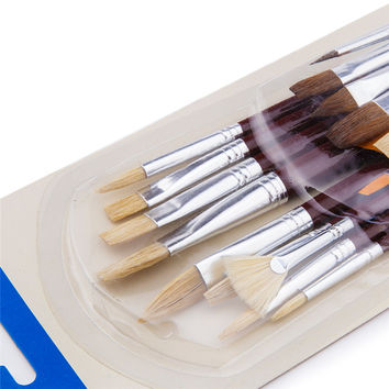 Premium 25 Painting Brushes