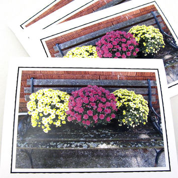 Floral Photo Note Card Set - Set of Four Photo Cards - Mums - Chrysanthemum Flowers - Set of 4 Blank Cards - Nature Photography - Gift Set