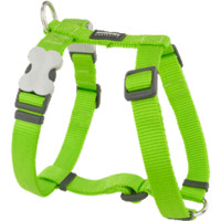 Red Dingo Classic Dog Harness - Lime Green