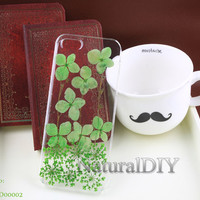 Real Flowers Dried pressed, leafs, iphone 4 4s 5 5s 5c case Samsung galaxy s3 s4 s5 cases, Samsung note 2 note 3 cases--ND00002