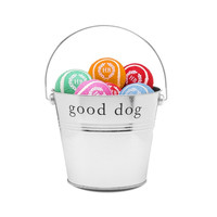 Assorted Colors Dog Play Balls Gift Bucket