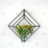 Pyramid Wall Sconce Terrarium //made with recycled glass//