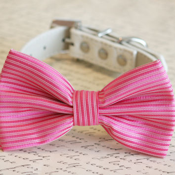 Hot Pink Dog Bow Tie, Pet Wedding, Pink wedding, Pink Lovers, Dog Birthday