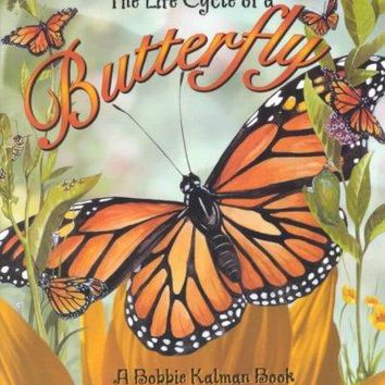 The Life Cycle of a Butterfly (The Life Cycle)