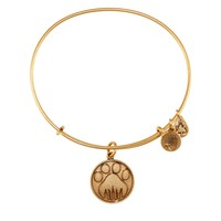 Paw Prints Charm Bangle
