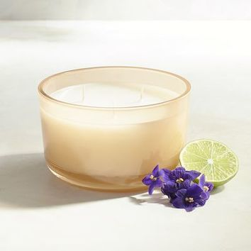 Beechwood Filled 3-Wick Candle