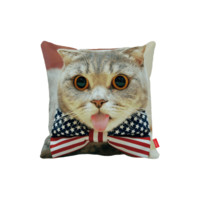 Cute Decorative Cat Pillow
