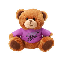 "Paige ""Think Again"" Plush Bear"
