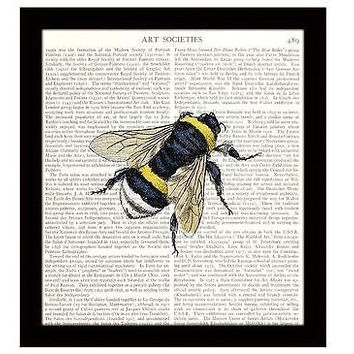 Bee Dictionary Art Print 8 x 10 Bumble Bee Nature Illustration