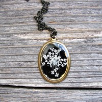 Queen Anne's Lace Pressed Flower Necklace, Black Background
