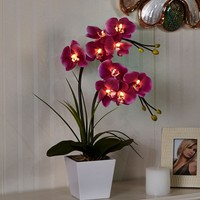 "Free Shipping 20"" (50cm) LED Blossom Orchid Flower Light 9PCs WarmLED with 2*AA Battery pot 9 Blossom Orchid Flowers with buds"