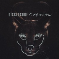 Disclosure - Caracal LP