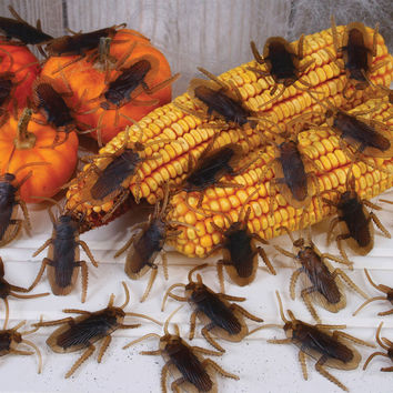 halloween decorations: roaches 80 per bag Case of 2