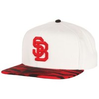 Nike SB Party Snapback - Men's at CCS