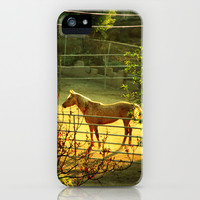 landscape with a horse iPhone & iPod Case by Marianna Tankelevich
