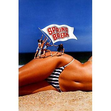 SPRING BREAK movie POSTER bikini body beach college guys COMEDY sexy 24X36