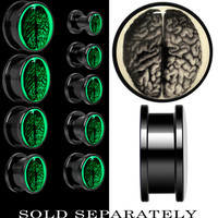 Dissected Brain Glow in the Dark Screw Fit Plug in Anodized Black Titanium | Body Candy Body Jewelry