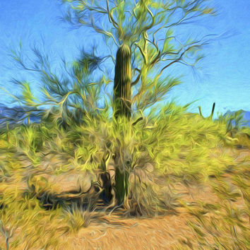 Saguaro and a Palo Verde Tree Landscape Fine Art Photography Painting Arizona Painting Print