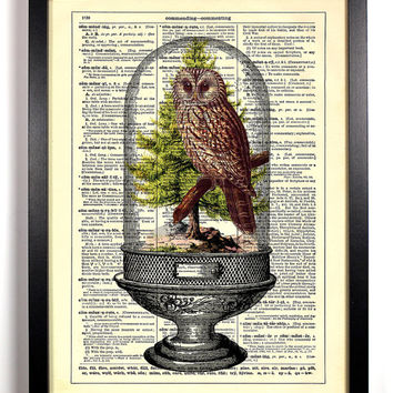 Owl Terrarium Repurposed Book Upcycled Dictionary Art Vintage Book Print Recycled Vintage Dictionary Page Collage Buy 2 Get 1 FREE