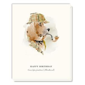 Driscoll Design's Dogs Assorted Watercolor Boxed Set