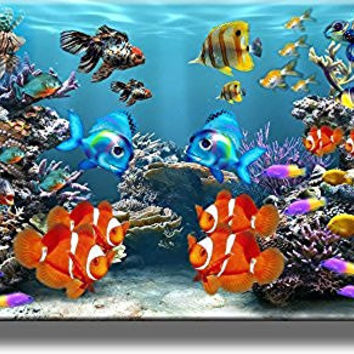 Fish Aquarium Picture on Stretched Canvas Wall Art Decor, Ready to Hang!