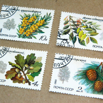 Soviet Vintage Postal Stamps-Forest stamps-Set of 4-Floral Botanical stamp-Collectibles-USSR Russia Soviet Union-postage-for Scrapbooking