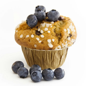 Maine - Blueberry Muffin