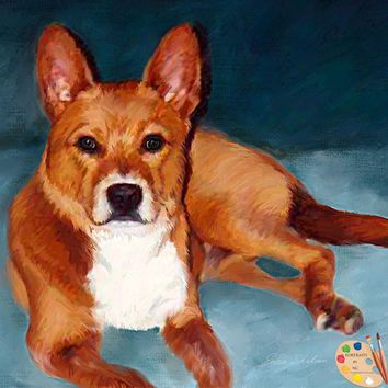 Basenji Dog Portrait 281