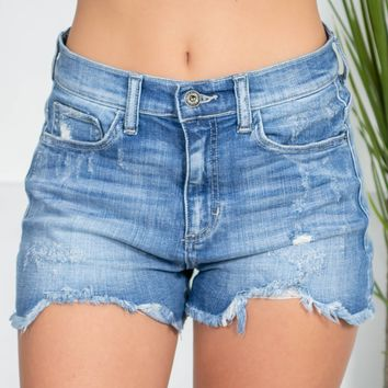 Summer Frayed High Rise Shorts